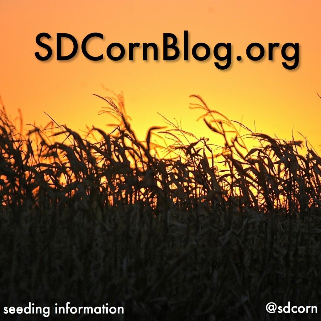 sdcornblog